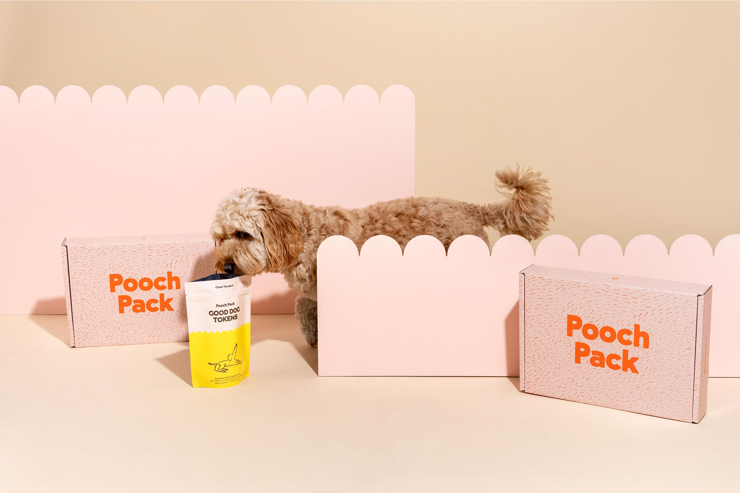 pooch_packaging design