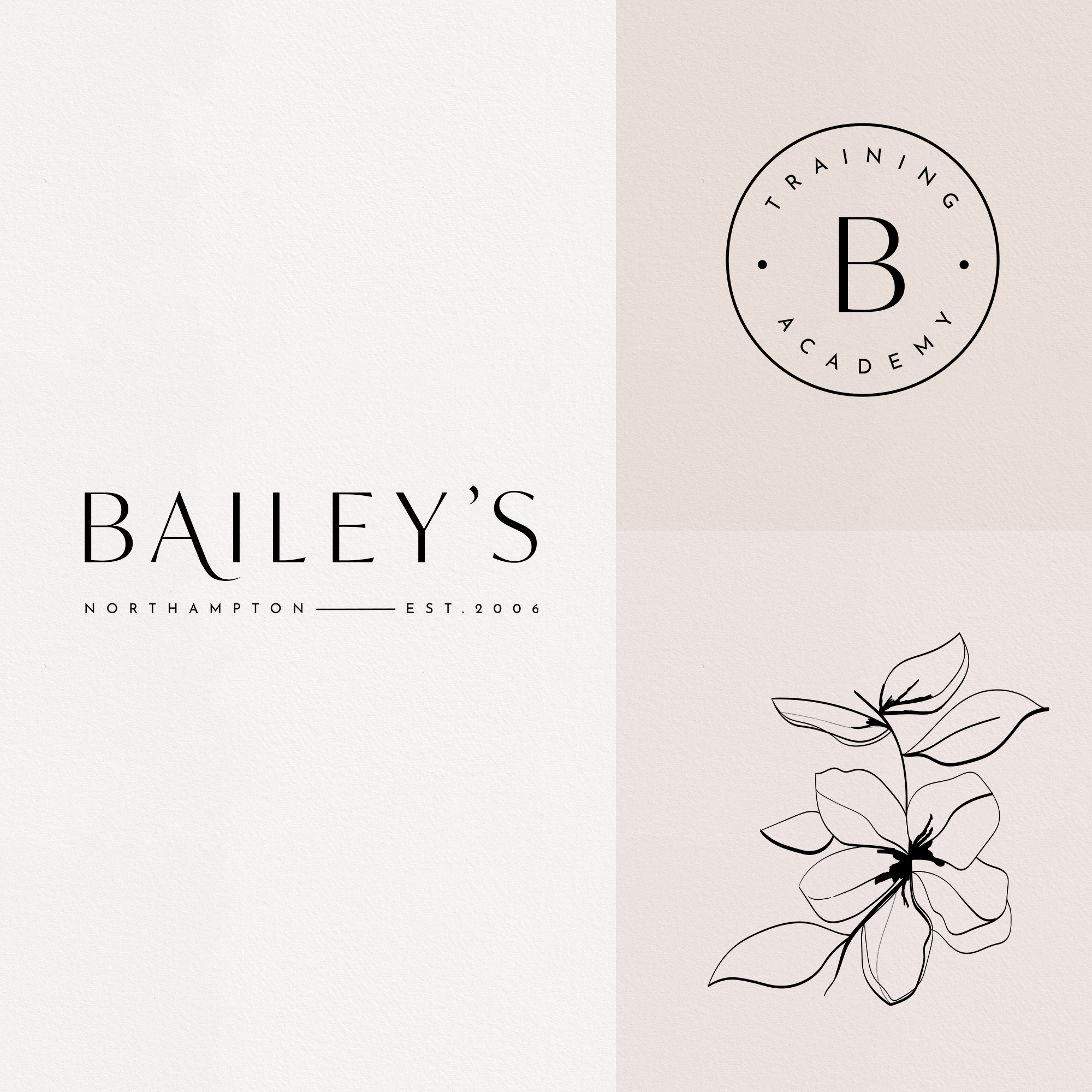 Bailey's Northampton illustration and logo