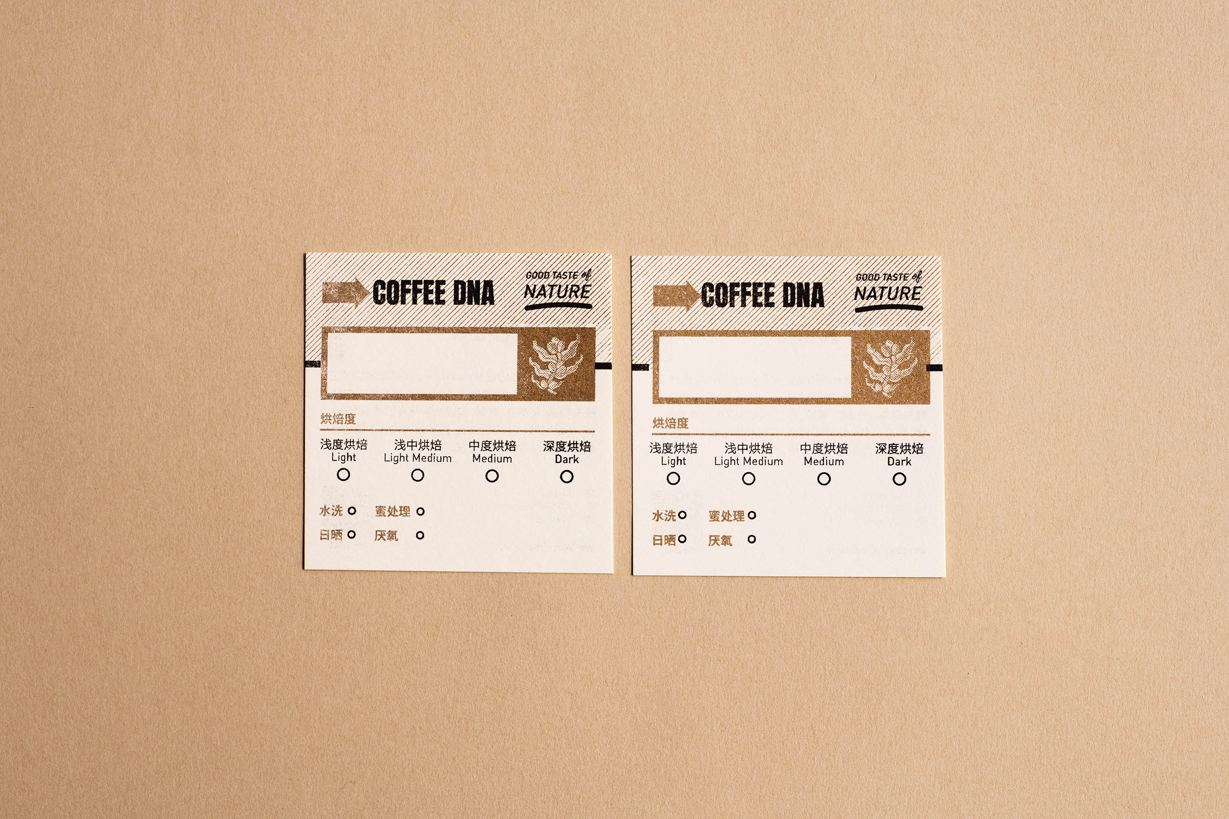 Coffee DNA_business card_front