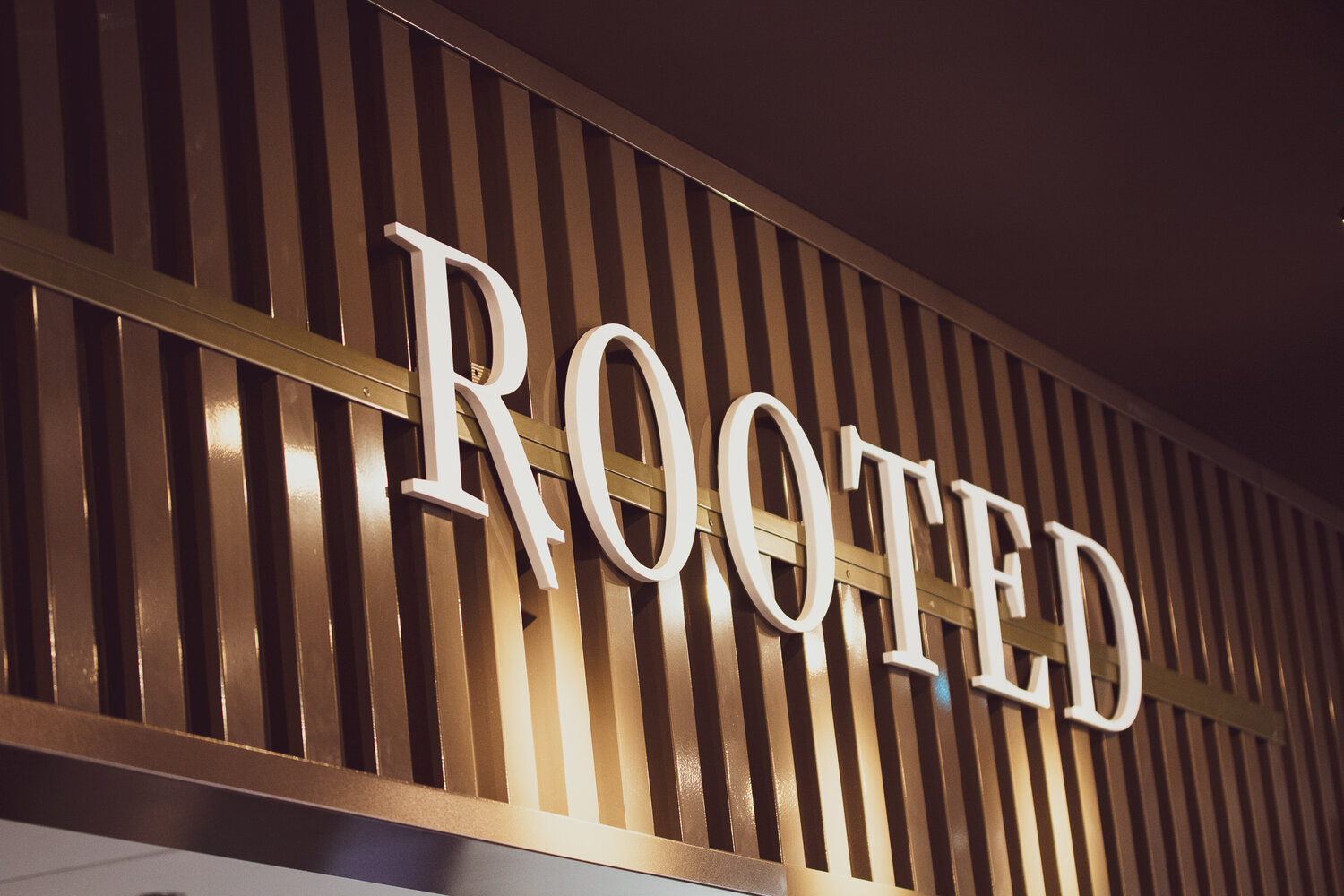Rooted logo