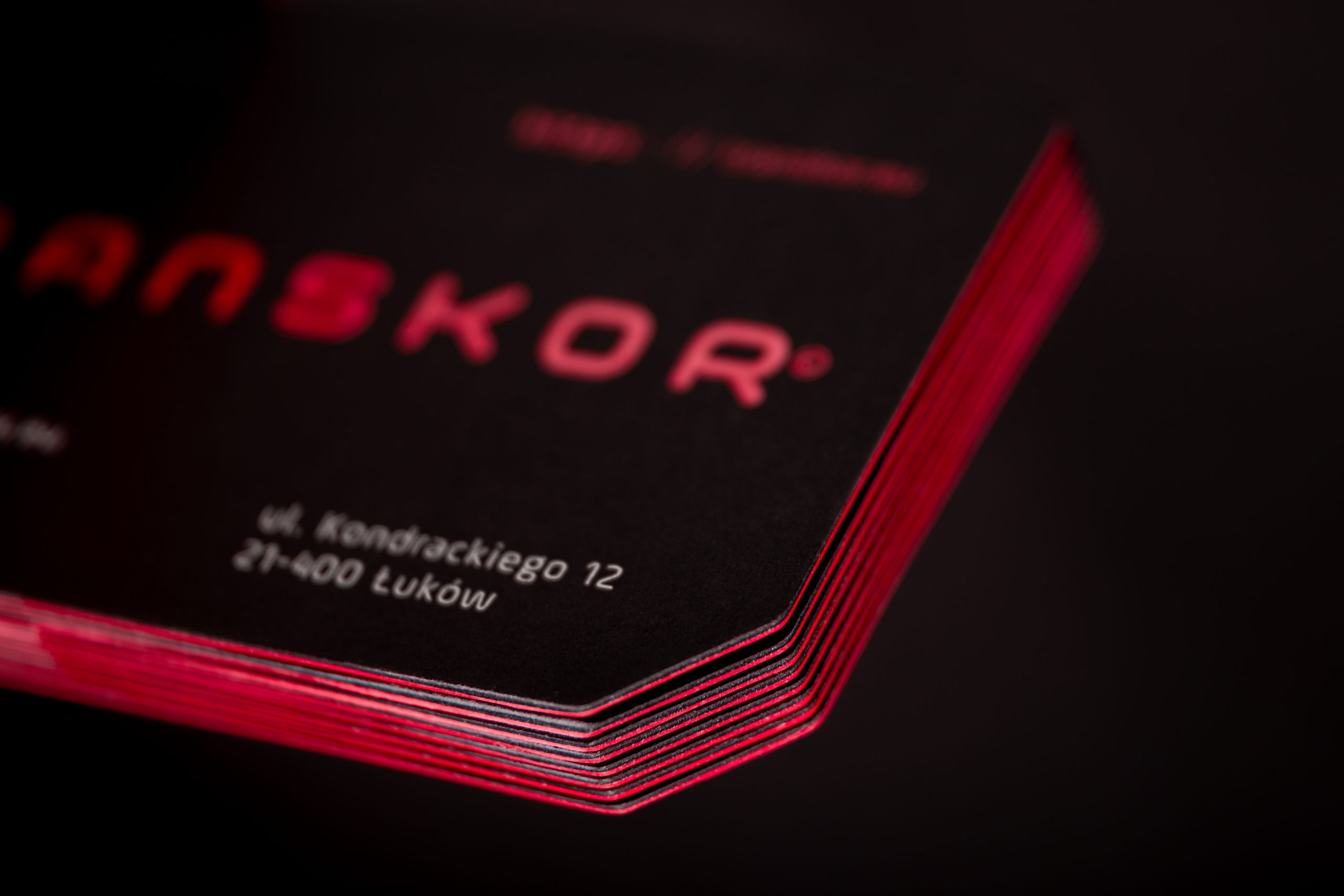 Transkor business card_cut out